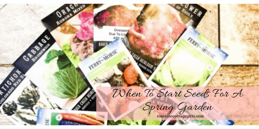 When to start seeds in your growing zone for a beautiful spring garden