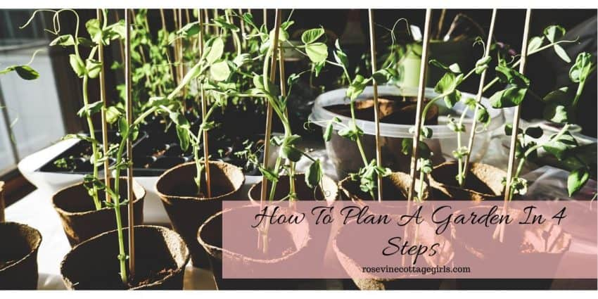 How to plan a garden in 4 easy steps