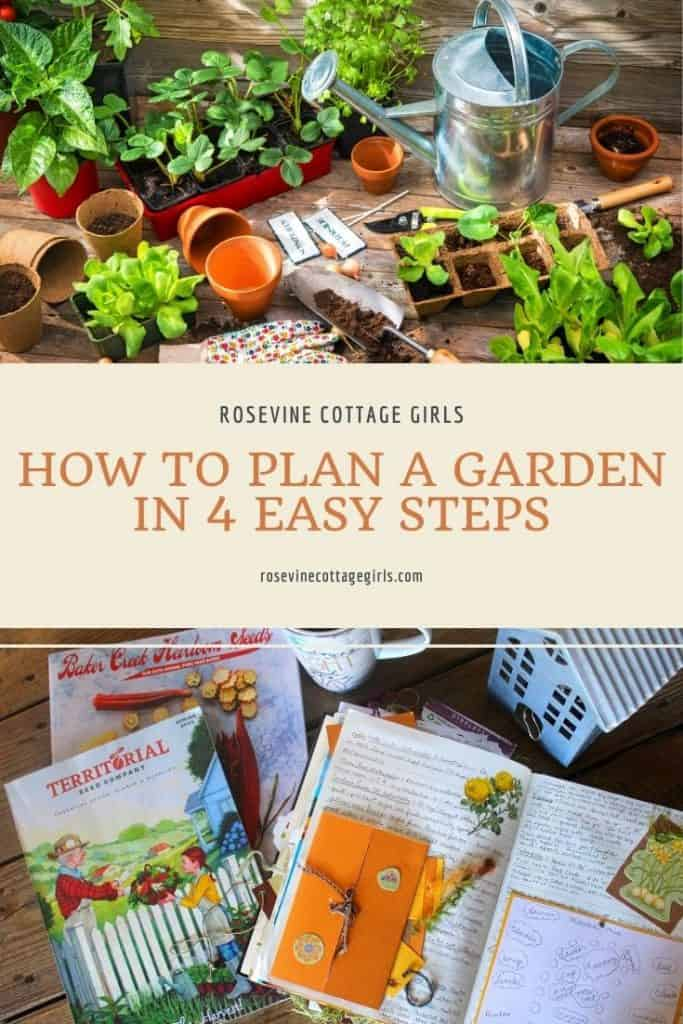 garden seeds and plants | how to plan a garden