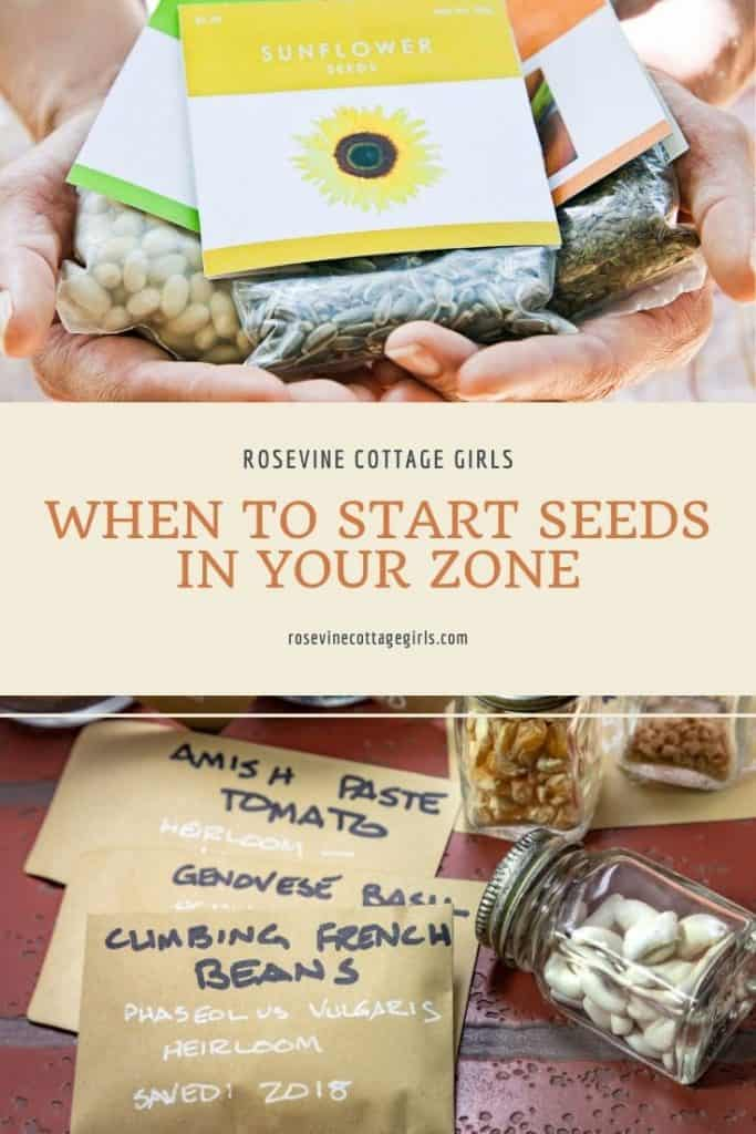 Seed packets | When to start seeds in your growing zone #rosevinecottagegirls