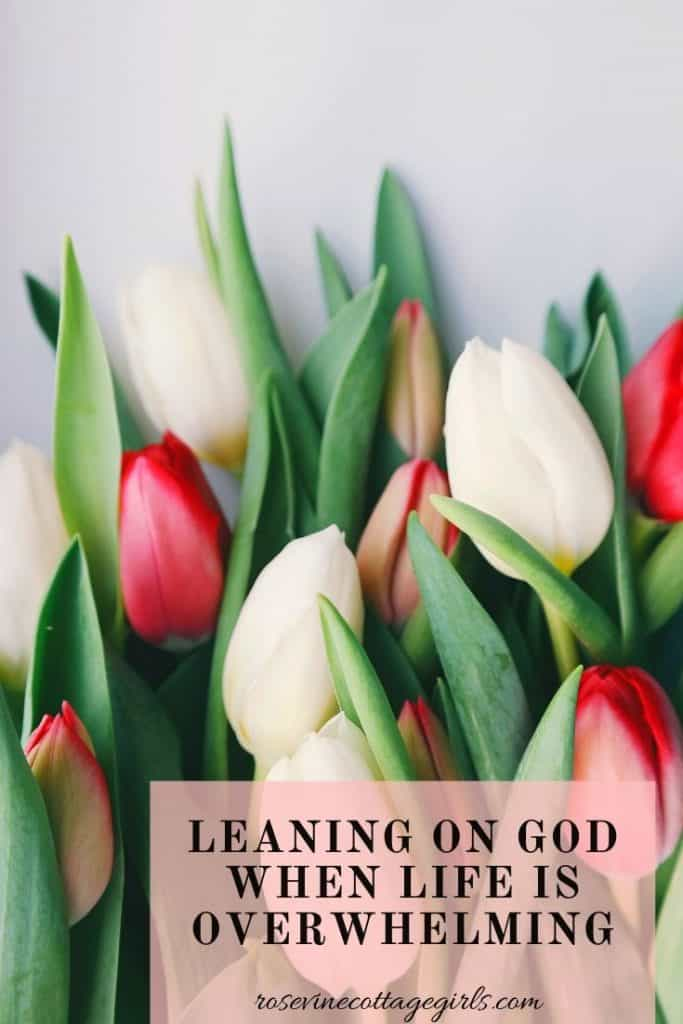 Leaning on God when life is overwhelming and you are struggling to find God in the hard places. #rosevinecottagegirls