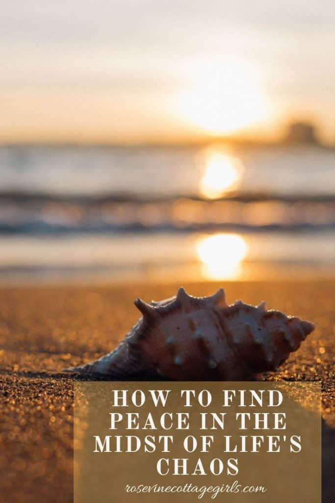 Shell on the beach | Finding peace in Chaos