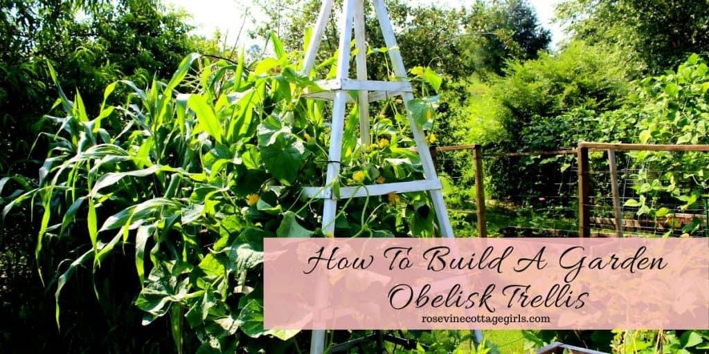 White garden obelisk in a garden | How to build a garden obelisk trellis #rosevinecottagegirls
