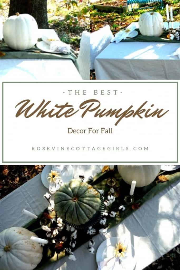 pumpkin tablescape | The Best White Pumpkin Decor on Amazon to include in your fall decor #rosevinecottagegirls