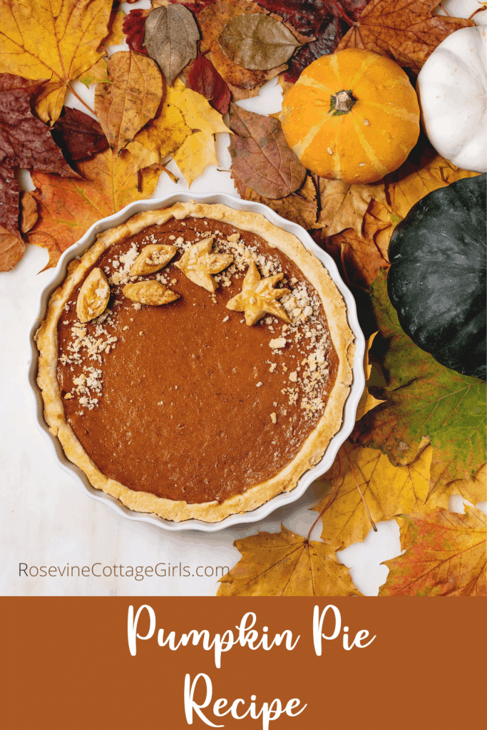 Pumpkin Pie Recipe | photo of colorful fall leaves, pumpkins and a pumpkin pie with leaf cutouts on top out of pie crust | rosevinecottagegirls.com