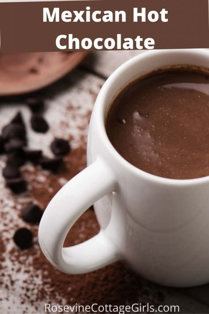photo of Mexican Hot Chocolate in a white mug with spices all around | RosevineCottageGirls | Mexican Hot Chocolate Recipe