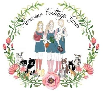 photo of the Rosevine Cottage Girls with their animals goats,
