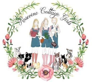 sketch of the rosevine cottage girls and animals