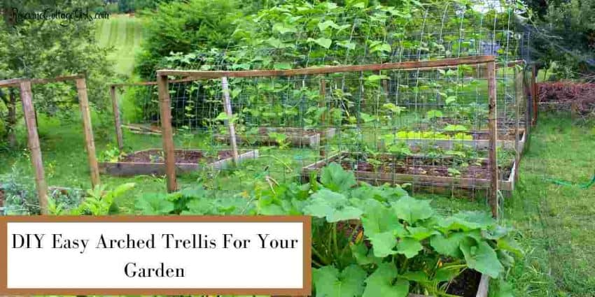DIY Easy Arched Trellis For Your Garden