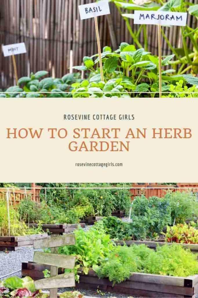 Herbs in the garden | How to start an herb garden for beginners #rosevinecottagegirls