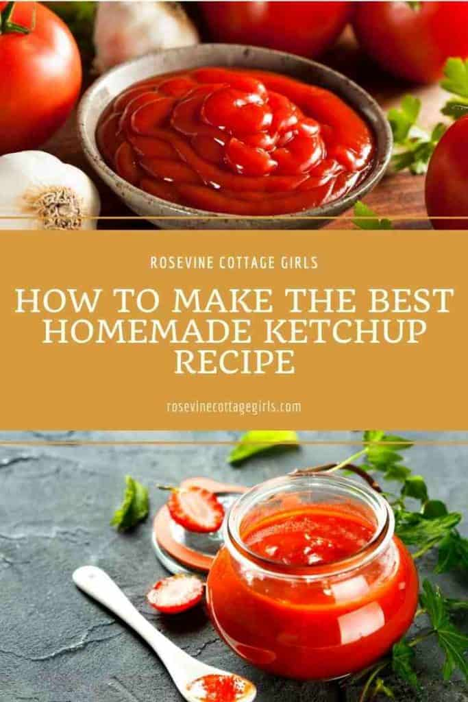 Ketchup in a bowl | The Best Homemade Ketchup Recipe