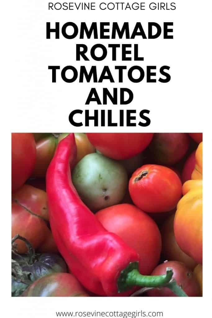 rotel tomatoes and chilies recipe | photo with tomatoes and chiles
