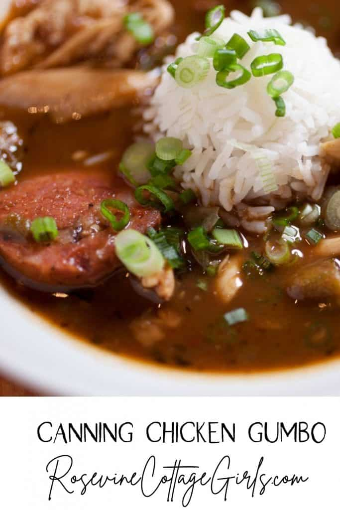How to can chicken gumbo soup | bowl of chicken gumbo soup