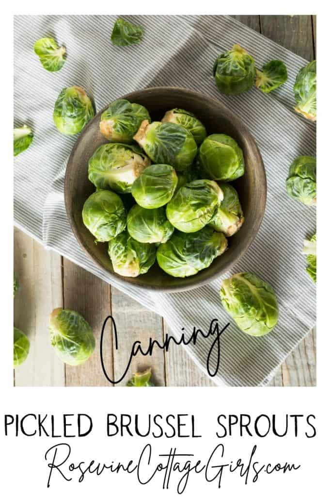 Pickled Brussel Sprouts | counter with a cloth on it and a bowl sitting on top with fresh brussel sprouts