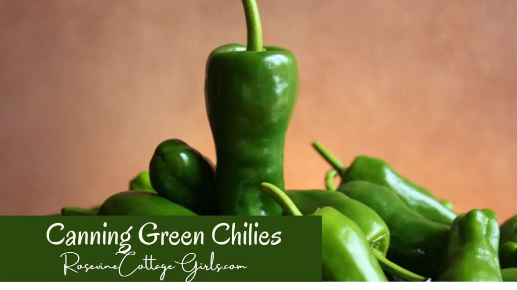 Canning Green Chilies | photo of a bunch of green chilies